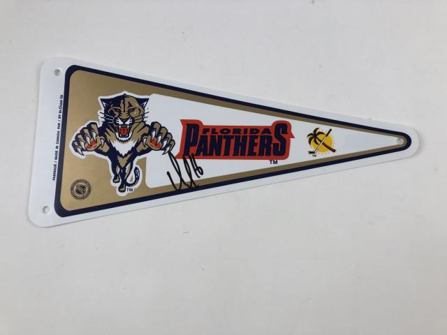 Viiri Florida Panthers