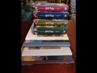 Harry Potter kirjat ja taidekirjoja