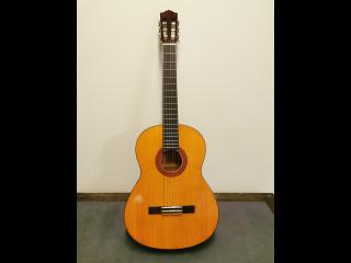 Yamaha kitara
